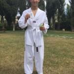 Taekwondo-sport-istituto-partitario-visconti